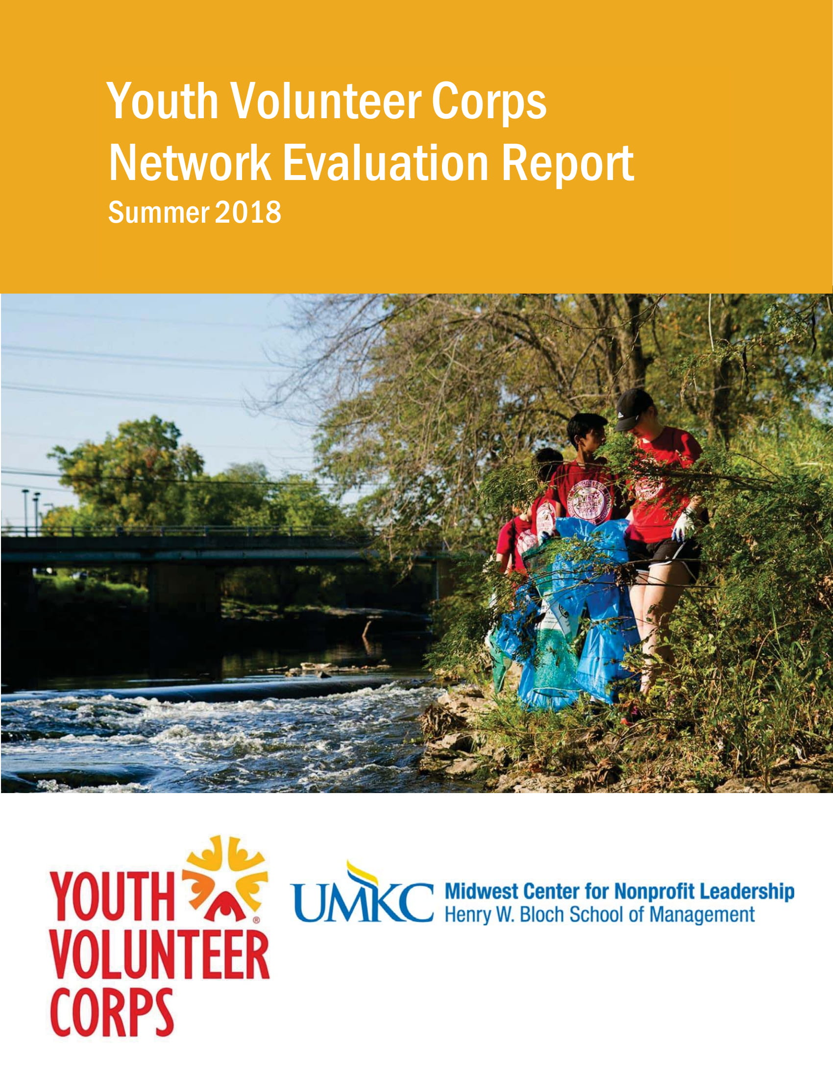 Link to Youth Volunteer Corps Network Evaluation